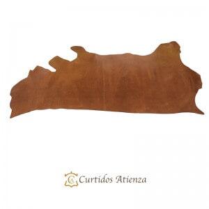 Hojas-vaqueta-flor-avellana