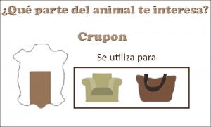 Crupon