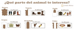 curtido-atienza-parte-animal