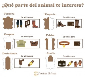 curtido-atienza-parte-animal2