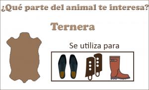 ternera